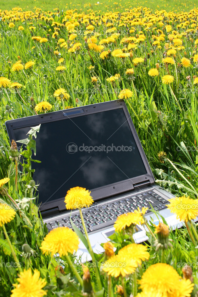 Laptop outdoors — Stock Photo #1805313
