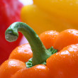 Royalty-Free Stock Photo: Bright pepper