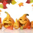 Autumn pumpkins on white — Stock Photo