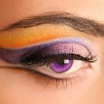 Purple — Stock Photo