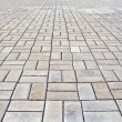 Stock Photo: Paving block