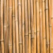 Bamboo wall - Stock Photo