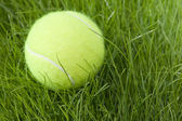 Tennis ball & grass — Stock Photo