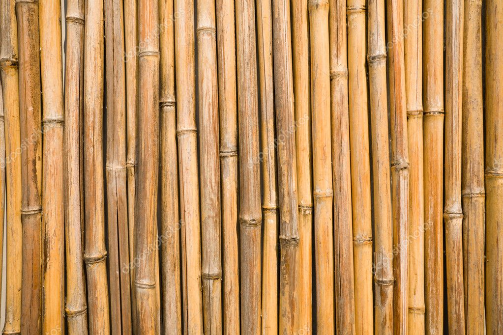 Bamboo wall stock photo stas k 1786462 for Bamboo wallpaper for walls