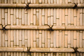 Wall bamboo — Stock Photo