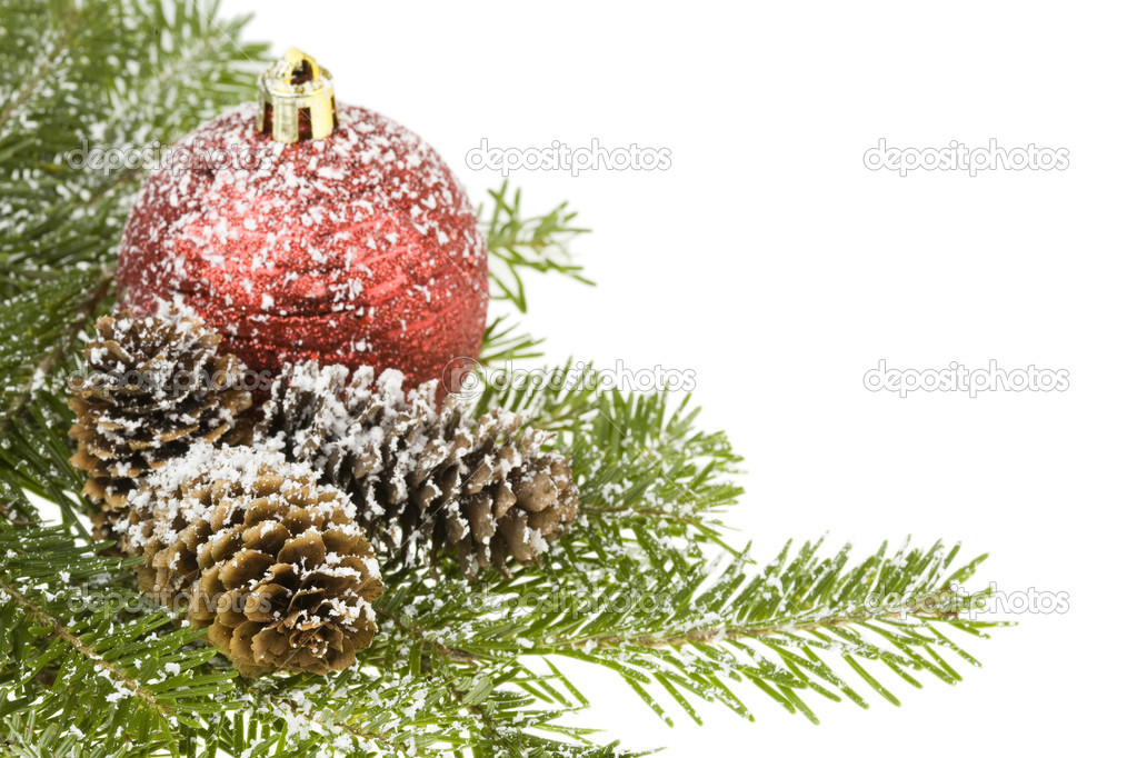 Christmas ball, nature branch spruce and cones. Isolated on white. — Stock Photo #1849222