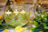 Green orchid arrangement — Stock Photo
