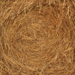 Closeup of a bale of hay - Stock Photo
