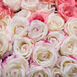 Big bunch of multiple pink roses — Stock Photo