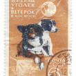 Stock Photo: Dogs in Space, 1966, USSR, postage