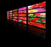 Color monitors with flowers — Stock Photo