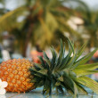 Fresh pineapple and pool - Stock Photo