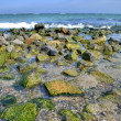 Rocks at the sea — Foto Stock