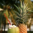 Coconut and pineapple — Stockfoto
