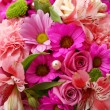Flowers background — Stock Photo #2343957
