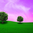 Meadow with tree — Stock Photo