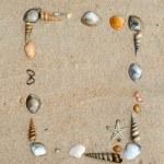 Shells on sand frame — Stock Photo