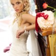 Beauty bride - Stock Photo