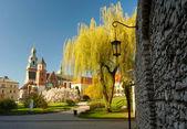 Wawel castle. Krakow — Stock Photo