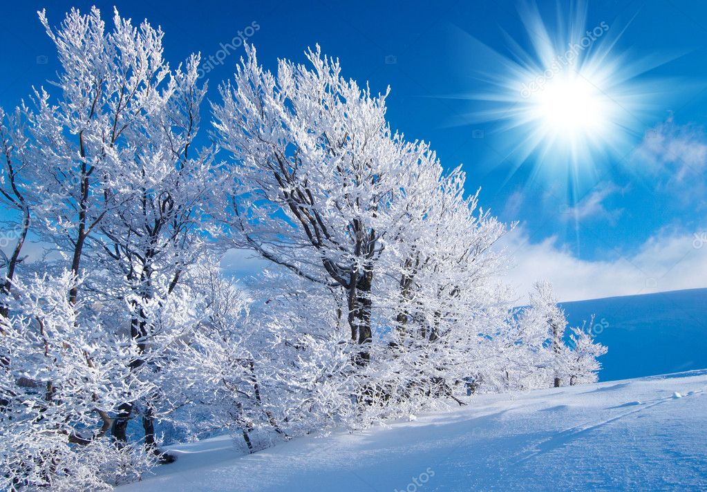 Winter in the mountains  Stock Photo #1863173