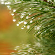 Water drops reflected in the water — Stock Photo #2041982