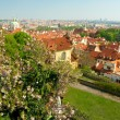 Prague spring panorama — Stock Photo