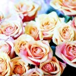 Bunch of pink roses — Stock Photo #1939190