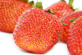 Strawberries studio isolated — Stock Photo