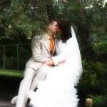 The walk of newlyweds — Stock Photo #1856220