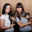 Stock Photo: Two girls with puppys