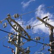 Stock Photo: Power line 110 v