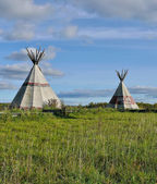 Two wigwams on a grass against the sky — Stock Photo