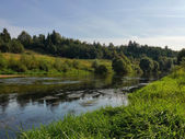 Flowing river in summer — Stock Photo