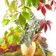 Royalty-Free Stock Photo: Autumn bouquet in yellow vase