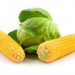 Stock Photo: Corn and ripe green cabbage