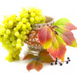 Cultural and wild grapes - Stock Photo