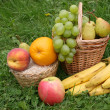 Fruit in a grass - Stock Photo