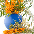 Stock Photo: Medical and beautiful buckthorn berries