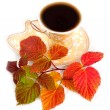 Leaves of raspberry and cup from coffee — Stock Photo