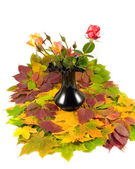 Autumn roses black vase — Stock Photo