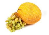 Fragrant yellow sweet melon — Stock Photo