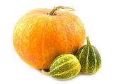 Striped decorative pumpkins — Stock Photo