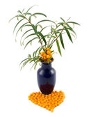 Vase with branch of buckthorn berries — Stock Photo