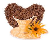 Kahve aroması sarı çiçek — Stok fotoğraf