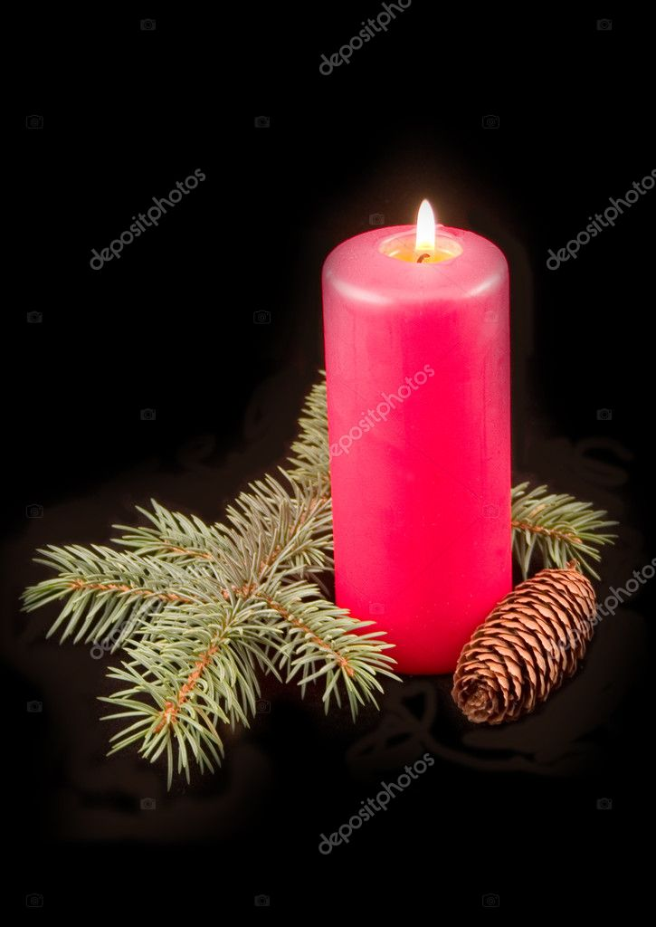 Red celebratory burning candle with furtree green branch on a black background — Stok fotoğraf #1771431