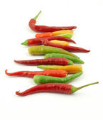 Colorful hot peppers in a row — Stock Photo