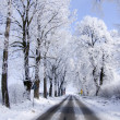 Stockfoto: Winter