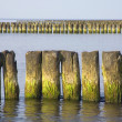 Sea. Breakwater - Stock Photo