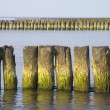 Sea. Breakwater — Stock Photo