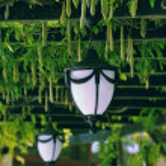 Garden lantern — Stock Photo #2016775